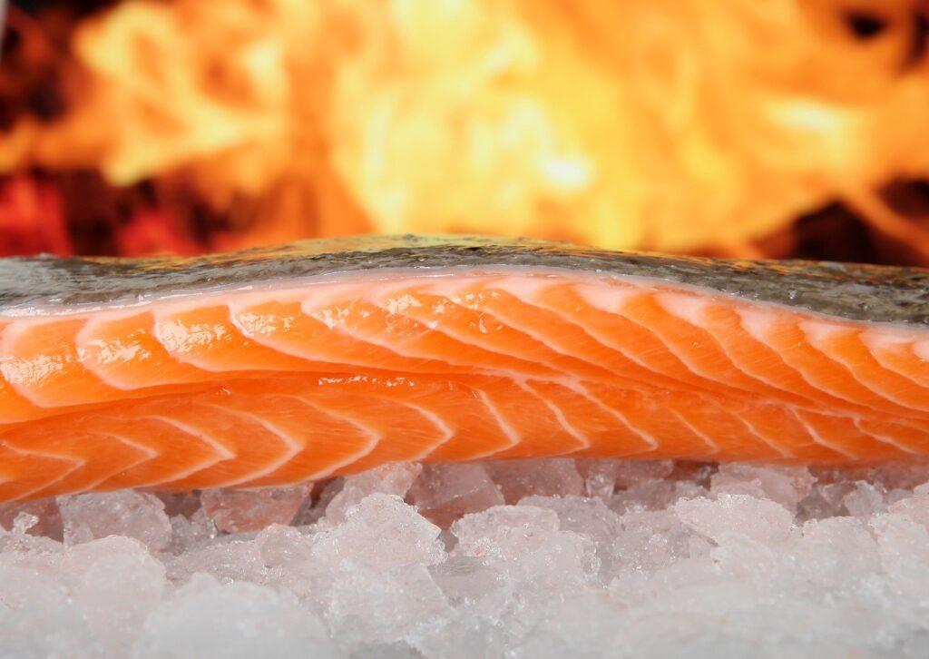 يحتوي سمك السلمون على نسبة عالية من الأحماض الدهنية أوميغا 3