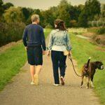 فوائد المشي المدهشة التي ستجعلك تحب المشي كل يوم